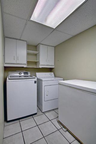 Photo 40: 16044 38 street NW in Edmonton: Zone 03 House for sale : MLS®# E4248402