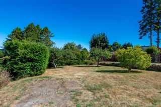 Photo 43: 589 Birch St in : CR Campbell River Central House for sale (Campbell River)  : MLS®# 885026