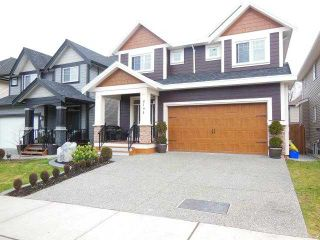 "Photo 1: 8104 211B ST in Langley: Willoughby Heights House for sale in ""YORKSON"" : MLS®# F1402801"