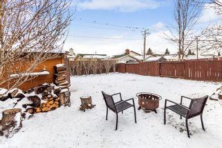 Photo 18: 151 Falsby Road NE in Calgary: Falconridge Semi Detached for sale : MLS®# A1061246