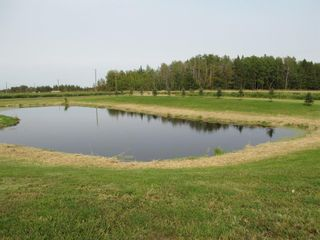 Photo 28: 385040 Range Road 6-3: Rural Clearwater County Detached for sale : MLS®# A1145666