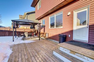 Photo 13: 227 Prestwick Manor SE in Calgary: McKenzie Towne Detached for sale : MLS®# A1059017