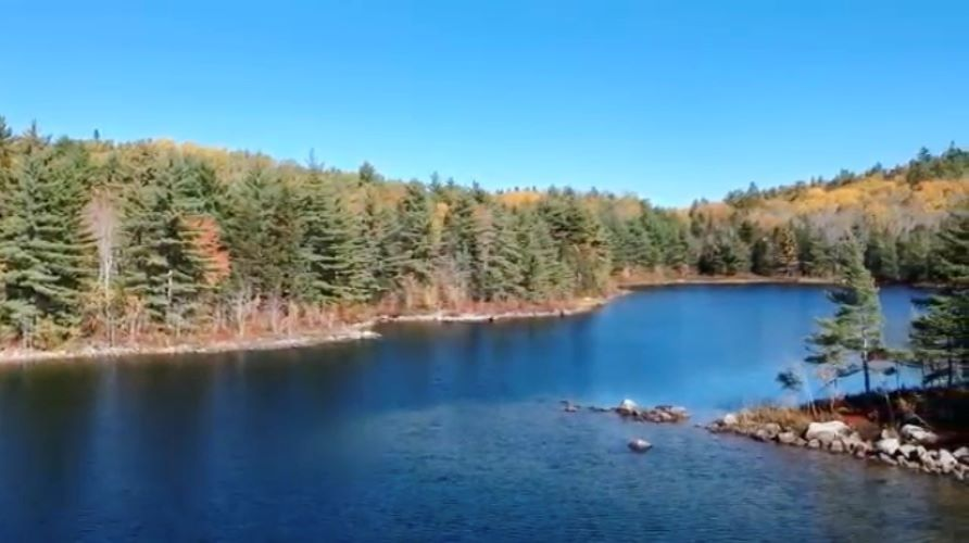Main Photo: Lot 13 & 14 Cornwall Road in Upper Cornwall: 405-Lunenburg County Vacant Land for sale (South Shore)  : MLS®# 202109043