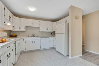 Photo 11: 20 Berkshire Close NW in Calgary: Beddington Heights Detached for sale : MLS®# A1133317