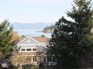 Photo 50: 1302 SATURNA DRIVE in PARKSVILLE: PQ Parksville Row/Townhouse for sale (Parksville/Qualicum)  : MLS®# 805179