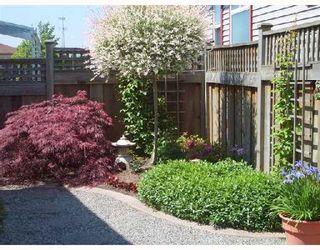 "Photo 9: 161 19639 MEADOW GARDENS Way in Pitt_Meadows: North Meadows House for sale in ""DORADO"" (Pitt Meadows)  : MLS®# V683947"