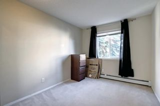 Photo 23: 205 7205 Valleyview Park SE in Calgary: Dover Apartment for sale : MLS®# A1152735