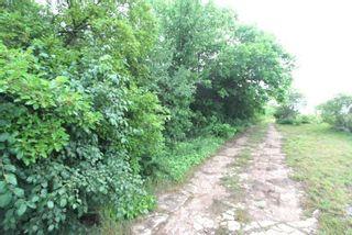 Photo 12: Lt 1&2 Shore Road in Brock: Rural Brock Property for sale : MLS®# N5281421