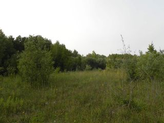 Photo 7: 22084 PT 2 PARCEL, WHITMORE RD in FORT FRANCES: Vacant Land for sale : MLS®# TB212402