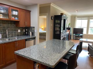 """Photo 7: 201 5430 201 Street in Langley: Langley City Condo for sale in """"The Sonnet"""" : MLS®# R2573824"""