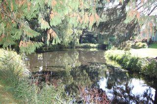 """Photo 33: 107 7001 EDEN Drive in Chilliwack: Sardis West Vedder Rd Townhouse for sale in """"Edenbank"""" (Sardis)  : MLS®# R2624887"""