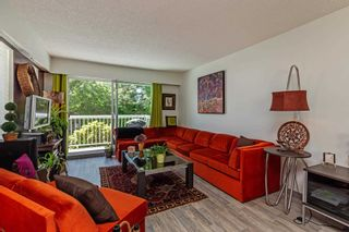 Photo 10: 101 7436 STAVE LAKE Street in Mission: Mission BC Condo for sale : MLS®# R2603469