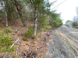 Photo 14: Lot 7 Lower Grant Road in Chester Basin: 405-Lunenburg County Vacant Land for sale (South Shore)  : MLS®# 202110749