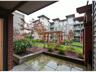 """Photo 15: 119 33539 HOLLAND Avenue in Abbotsford: Central Abbotsford Condo for sale in """"The Crossing"""" : MLS®# F1427624"""