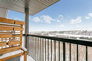 Photo 19: 403 1188 HYNDMAN Road in Edmonton: Zone 35 Condo for sale : MLS®# E4228866