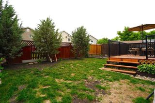 Photo 26: 53 Shauna Way in Winnipeg: Harbour View South Residential for sale (3J)  : MLS®# 202114373