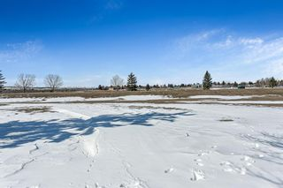 Photo 36: 3 Downey Green: Okotoks Detached for sale : MLS®# A1088351