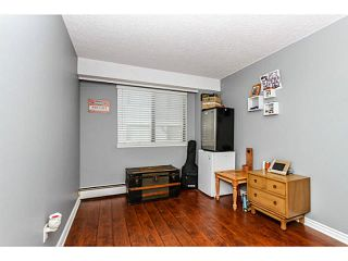 """Photo 15: 304 47 AGNES Street in New Westminster: Downtown NW Condo for sale in """"FRASER HOUSE"""" : MLS®# V1115941"""