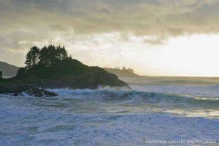 Photo 1: 865 Moser Pl in : PA Tofino Land for sale (Port Alberni)  : MLS®# 880288