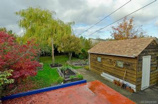 Photo 17: 1520 Clawthorpe Ave in : Vi Oaklands House for sale (Victoria)  : MLS®# 608399