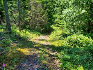 "Photo 9: Lot 49 FLINT Road: Keats Island Land for sale in ""10 Acres"" (Sunshine Coast)  : MLS®# R2460996"