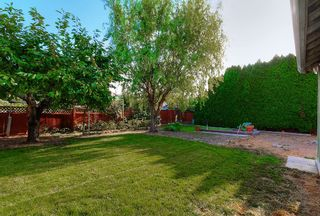 Photo 21: 1739 North Highland Drive in Kelowna: Glenmore House for sale (Central Okanagan)  : MLS®# 10123486