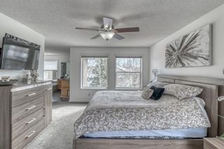 Photo 23: 90 Mt Douglas Circle SE in Calgary: McKenzie Lake Detached for sale : MLS®# A1096702