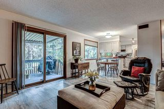 Photo 14: 88 Berkley Rise NW in Calgary: Beddington Heights Detached for sale : MLS®# A1127287