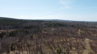 Photo 10: 8532 Trunk 4 Highway in Telford: 108-Rural Pictou County Vacant Land for sale (Northern Region)  : MLS®# 202108300