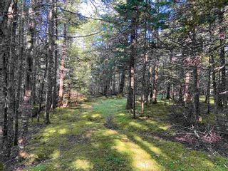 Photo 10: Lot Seaview Road in Seaview: 305-Richmond County / St. Peters & Area Vacant Land for sale (Highland Region)  : MLS®# 202124486