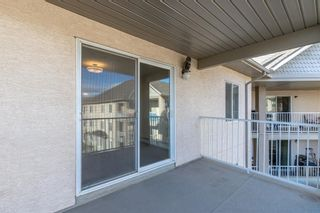 Photo 26: 306 2000 Citadel Meadow Point NW in Calgary: Citadel Apartment for sale : MLS®# A1055011