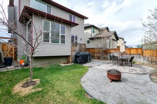 Photo 40: 31 BRIGHTONCREST Common SE in Calgary: New Brighton Detached for sale : MLS®# A1102901