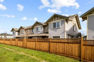 Photo 36: 7 3338 Whittier Ave in : SW Rudd Park Row/Townhouse for sale (Saanich West)  : MLS®# 867392