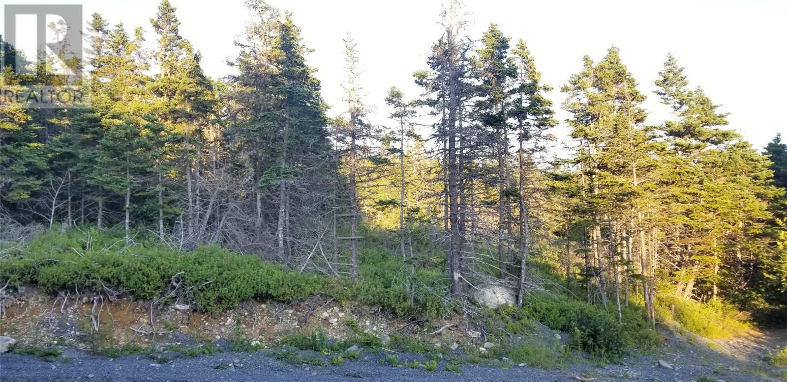 Main Photo: 18-24 Butts Road in Spaniard's Bay: Vacant Land for sale : MLS®# 1234275