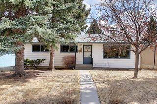 Photo 39: 166 Havenhurst Crescent SW in Calgary: Haysboro Detached for sale : MLS®# A1095089
