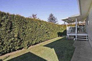 """Photo 19: 16 7292 ELM Road: Agassiz House for sale in """"Maplewood Village"""" : MLS®# R2417178"""