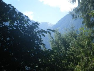Photo 8: 14600 SQUAMISH VALLEY ROAD in Squamish: Upper Squamish Land for sale : MLS®# R2100484