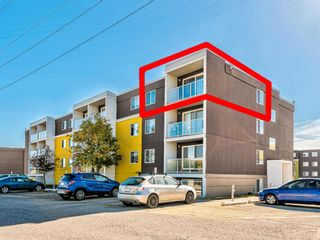 Photo 1: 412A 4455 Greenview Drive NE in Calgary: Greenview Apartment for sale : MLS®# A1101294