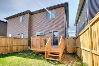Photo 43: 144 Cornerstone Avenue NE in Calgary: Cornerstone Semi Detached for sale : MLS®# A1116950
