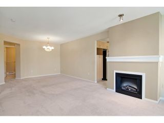 Photo 7: 411 9283 GOVERNMENT Street in Burnaby: Government Road Condo  (Burnaby North)  : MLS®# V1121339
