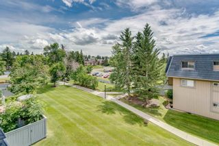 Photo 18: 2310 3115 51 Street SW in Calgary: Glenbrook Apartment for sale : MLS®# A1014586