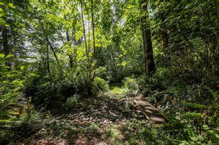 Photo 29: 6510 Eagles Dr in Courtenay: CV Courtenay North Land for sale (Comox Valley)  : MLS®# 878474