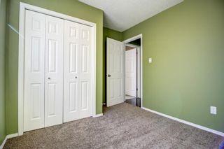 Photo 15: 148 VENTURA Way NE in Calgary: Vista Heights Detached for sale : MLS®# A1052725