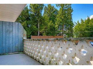 """Photo 20: 101 711 E 6TH Avenue in Vancouver: Mount Pleasant VE Condo for sale in """"THE PICASSO"""" (Vancouver East)  : MLS®# R2587341"""