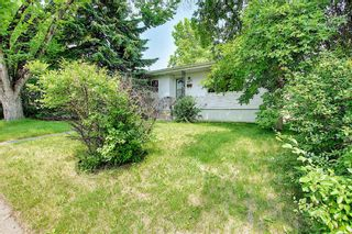 Photo 45: 420 Thornhill Place NW in Calgary: Thorncliffe Detached for sale : MLS®# A1146639