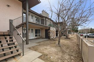 Photo 3: 2045 SADDLEBACK Road in Edmonton: Zone 16 Carriage for sale : MLS®# E4236449