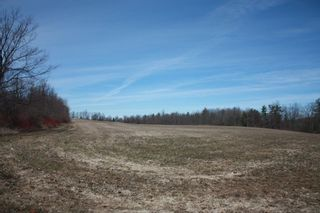 Photo 1: 2nd Line in Roseneath: Land Only for sale : MLS®# 188329