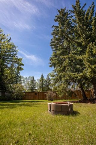 Photo 45: 5939 Dalcastle Drive NW in Calgary: Dalhousie Detached for sale : MLS®# A1114949