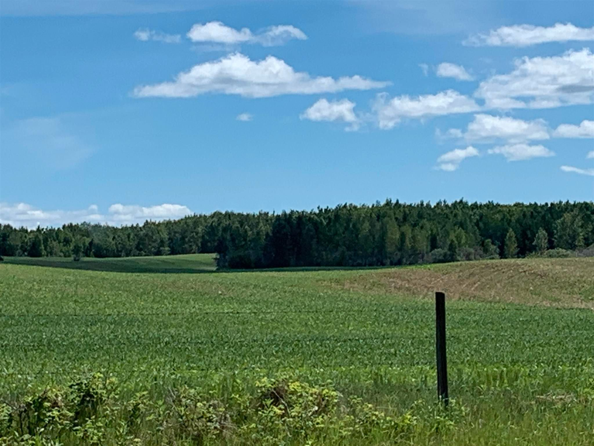 Main Photo: TWP 475 RR 31: Rural Leduc County Rural Land/Vacant Lot for sale : MLS®# E4244953