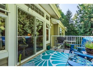 """Photo 36: 15 35253 CAMDEN Court in Abbotsford: Abbotsford East Townhouse for sale in """"Camden Court"""" : MLS®# R2600952"""